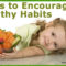 Best Preschool Gainesville FL | 4 Ways to Encourage Healthy Eating