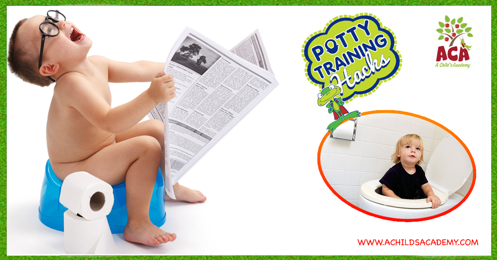 Gainesville Potty Training