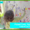 Promoting Preschool Creativity in Gainesville Florida